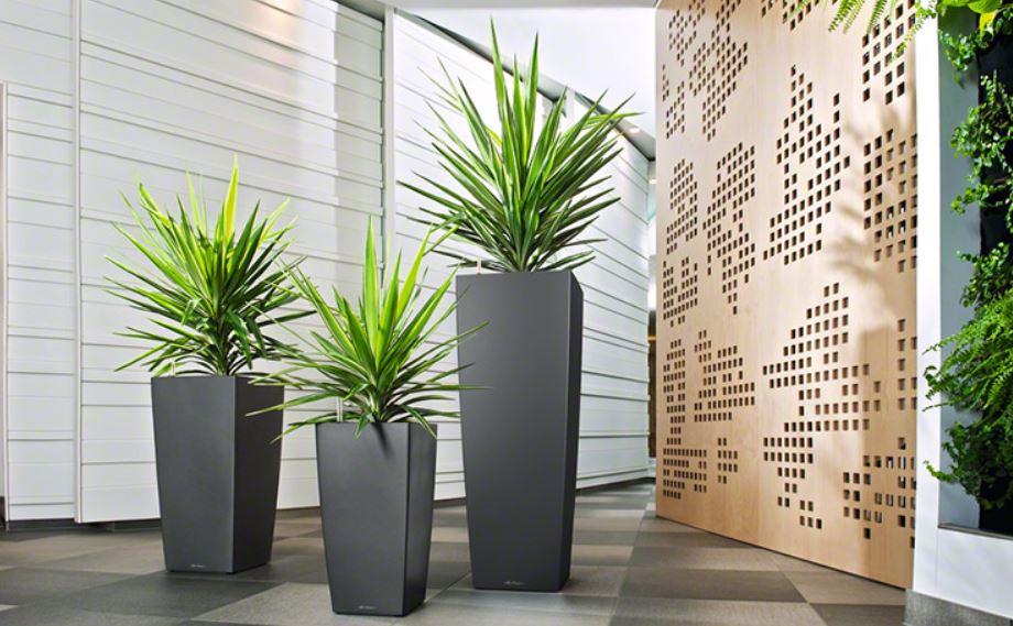 maxi cubi hiebinger hydrokulturen und wasserbrunnen. Black Bedroom Furniture Sets. Home Design Ideas