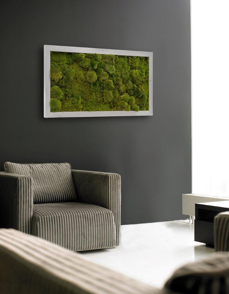 neues von hiebinger hydrokultur pflanzen kaufen im hydrokultur shop hiebinger hydrokulturen. Black Bedroom Furniture Sets. Home Design Ideas
